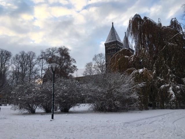paradiset lund